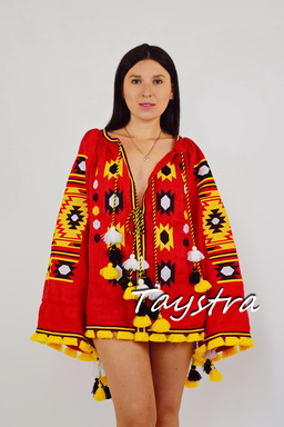 Embroidered short dress vyshyvanka Ukrainian embroidered Tunic Boho style