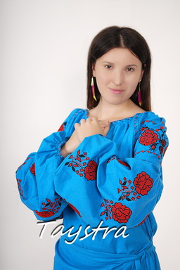 Vyshyvanka Blue Tunic Ukrainian embroidery, Mini Dress, Boho, ethno, style boho chic, Embroidered dress, Multi Color Embroidery Linen